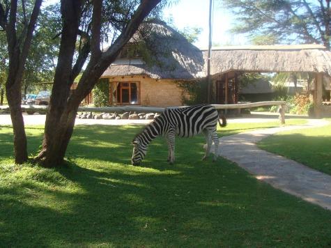 Checking out - Pamuzinda